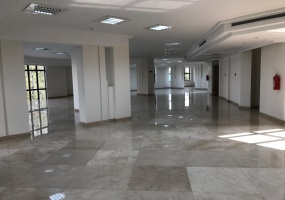 Office, ,4 BathroomsBathrooms,Office,For Rent,1806